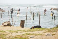 Pesca del zanco Fotografía de archivo libre de regalías
