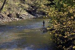 Pesca dell'uomo anziano Immagine Stock