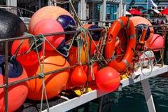 Pesca della boa rossa Fotografia Stock Libera da Diritti