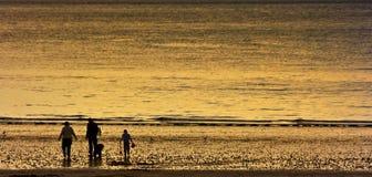 Pesca della famiglia al tramonto. Fotografie Stock Libere da Diritti