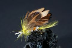 Pesca della mosca immagine stock