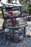 Pesca della roba nell'iarda immagini stock