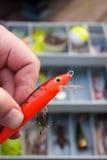 Pesca della selezione di richiamo immagine stock libera da diritti