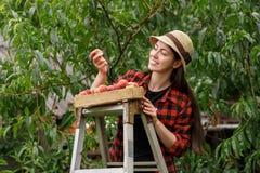 Pesca della tenuta del giardiniere della donna Immagini Stock Libere da Diritti