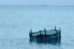 Pesca della trappola nel cuoco Islands della laguna di Aitutaki Fotografia Stock
