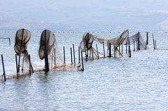 Pesca delle trappole in Lago di Varano, Italia Fotografia Stock Libera da Diritti