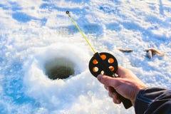 Pesca di inverno La barretta della tenuta della mano del pescatore si è abbassata nel foro del ghiaccio Piccolo pesce che si trov Fotografia Stock