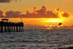 Pesca di mattina Fotografia Stock Libera da Diritti