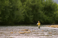 Pesca di mosca in acque calme Fotografie Stock Libere da Diritti