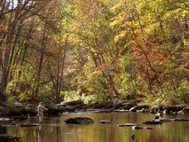 Pesca di mosca di autunno Fotografia Stock