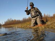 Pesca di mosca - lotta con i pesci Fotografia Stock Libera da Diritti