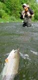 Pesca di mosca - pescatore contro i pesci Fotografia Stock Libera da Diritti