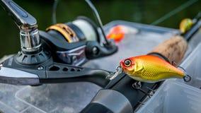 Pesca di richiamo Immagini Stock Libere da Diritti