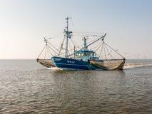 Pesca di Shrimper, Olanda Fotografie Stock