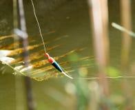 Pesca do flutuador na natureza fotos de stock royalty free