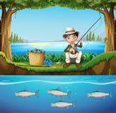 Pesca do homem no rio Imagens de Stock