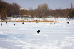 Pesca do inverno Fotos de Stock Royalty Free