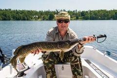 Pesca do pique do verão na Suécia Fotos de Stock
