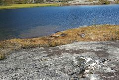 Pesca do verão em Noruega Imagens de Stock Royalty Free