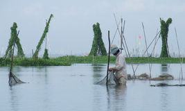 Pesca em Danau (lago) Tempe em Sulawesi Fotografia de Stock