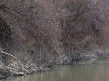 Pesca en el 3 de marzo Foto de archivo
