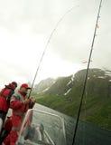 Pesca en el fiordo foto de archivo
