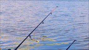 Pesca en el lago y el río almacen de video