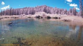 Pesca en el río A.C. Canadá de la caldera almacen de metraje de vídeo