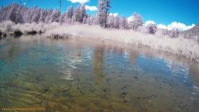 Pesca en el río A.C. Canadá de la caldera almacen de video