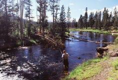 Pesca en el río de Firehole Foto de archivo libre de regalías