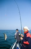 Pesca en mar. Fotos de archivo libres de regalías