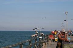 Pesca fora do cais fotografia de stock royalty free