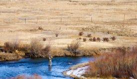 Pesca fredda di giorno Fotografia Stock Libera da Diritti