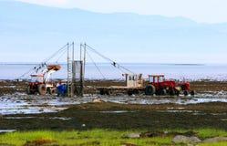 Pesca moderna da enguia em Quebeque Imagem de Stock Royalty Free