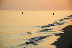 Pesca no por do sol Imagens de Stock Royalty Free