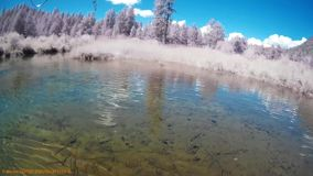 Pesca no rio BC Canadá da chaleira video estoque