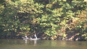 Pesca pacífica (1 de 1) almacen de metraje de vídeo