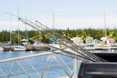 Pesca polos Foto de Stock