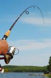 Pesca Rod imagem de stock