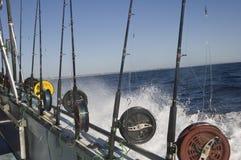Pesca Rod Row fotografía de archivo libre de regalías