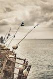 Pesca Ros em um cais Imagem de Stock