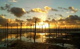 Pesca salmon escocesa da rede de estaca foto de stock royalty free