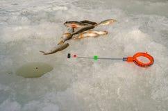 Pesca sul ghiaccio della primavera Immagine Stock