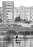 Pesca urbana Foto de Stock
