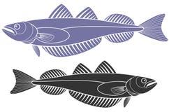 pescadas Fotografia de Stock