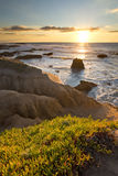 Pescadero Beach California at Sunset Stock Photography