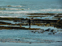 Pescador Fotos de Stock Royalty Free