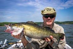 Pescador com o troféu enorme da pesca dos walleye Imagens de Stock Royalty Free