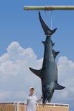 Pescador con la captura gigante del tiburón de mako Foto de archivo
