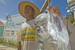 Pescador con los pescados grandes fotografía de archivo